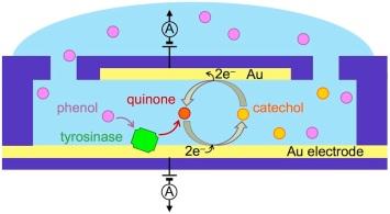 toc_bionanofluidics